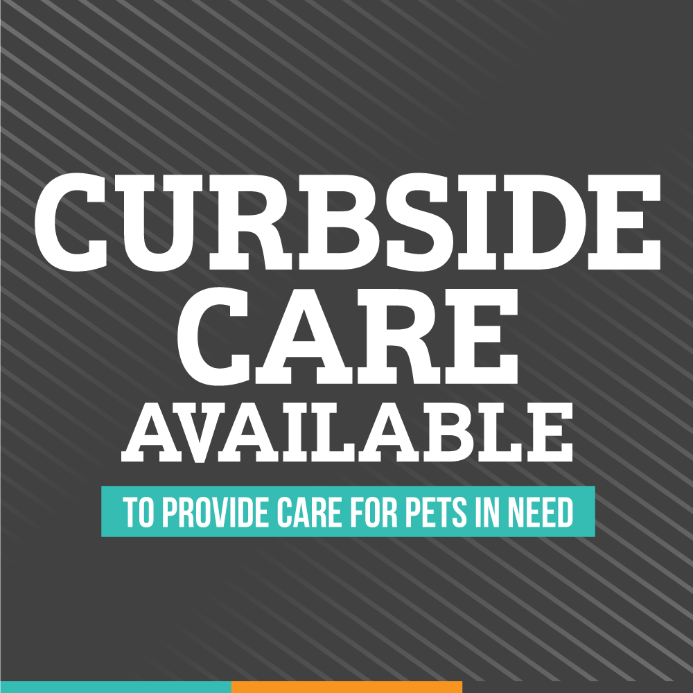 Curbside Care Available