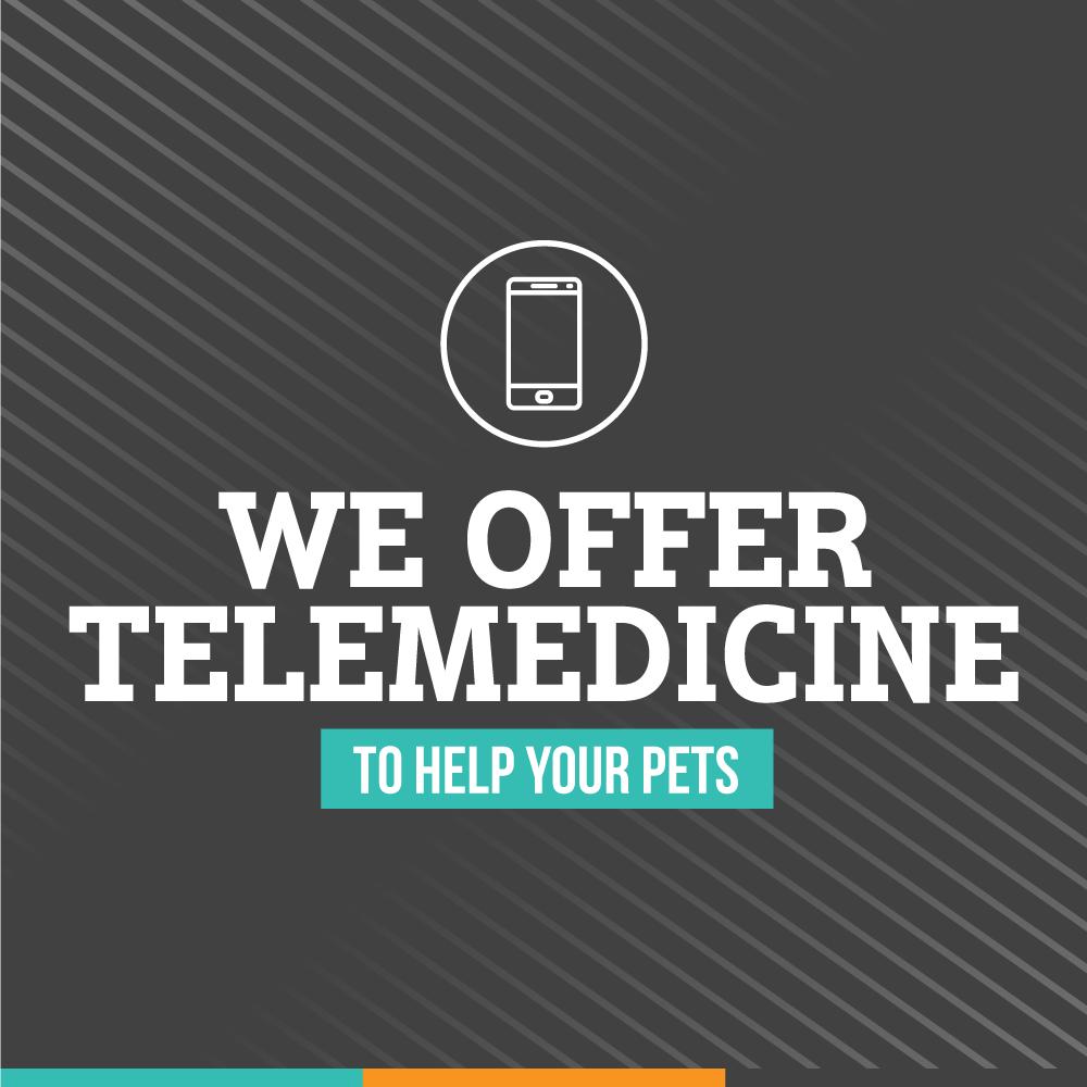 We Offer Telemedicine